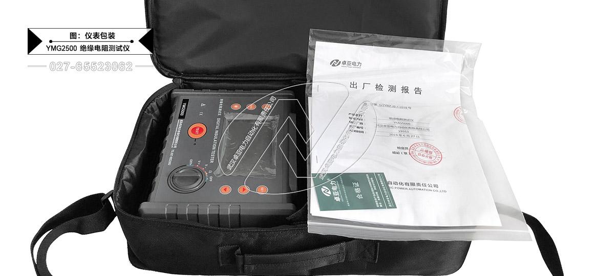 2500V绝缘电阻测试仪 - 包装
