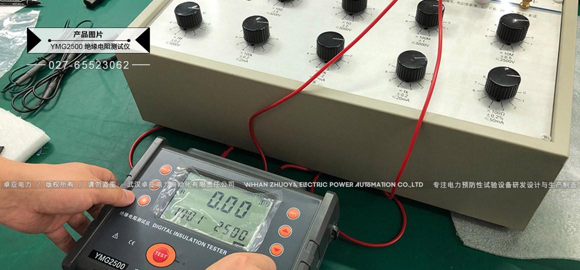 2500V绝缘电阻测试仪 - 出厂数据校准