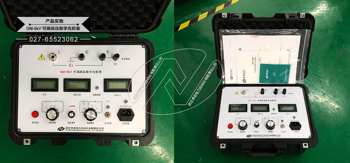 5kV可调高压数字兆欧表 - 实物照片