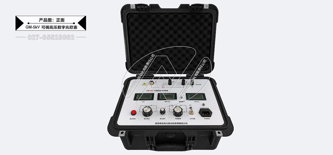 5kV可调高压数字兆欧表 - 正面