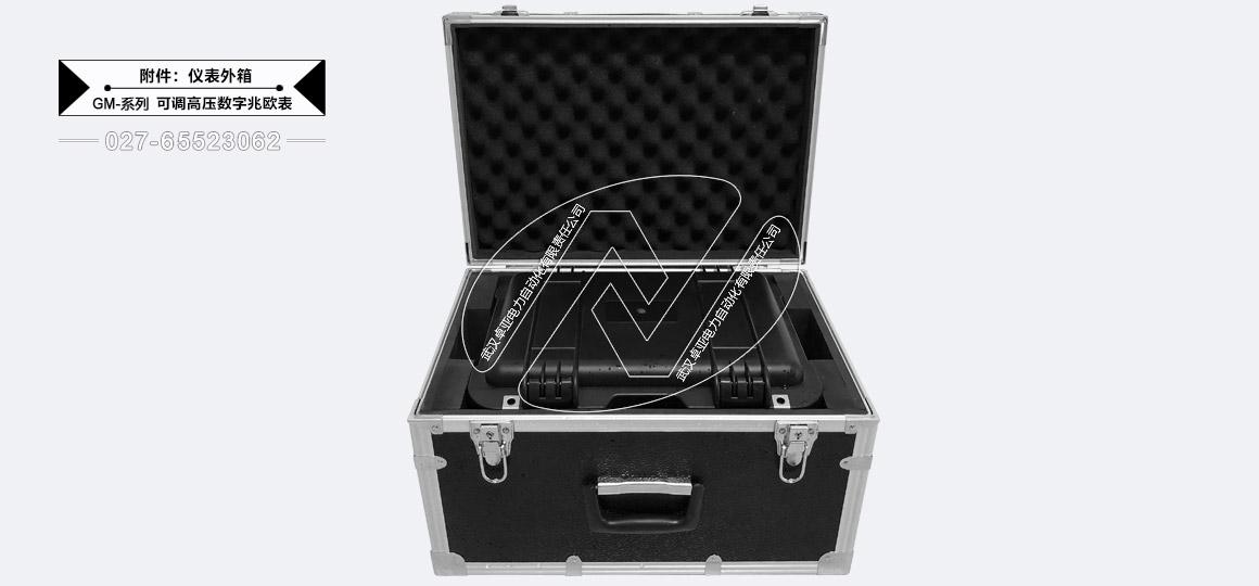 5kV可调高压数字兆欧表 - 外机箱