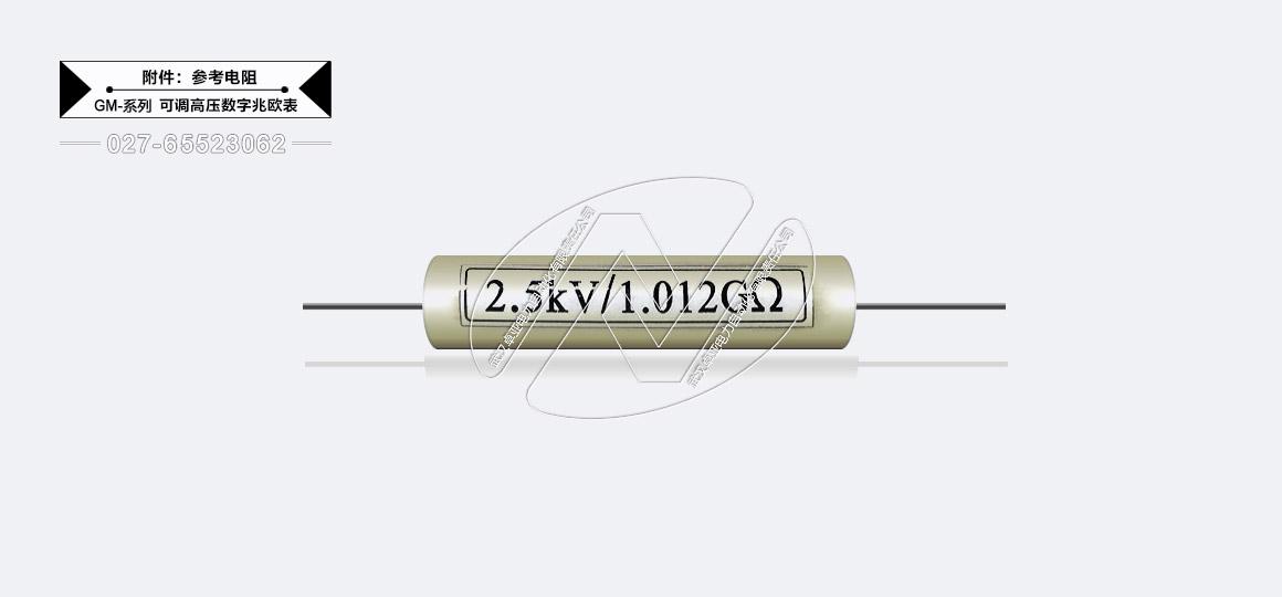 5kV可调高压数字兆欧表 - 参考电阻