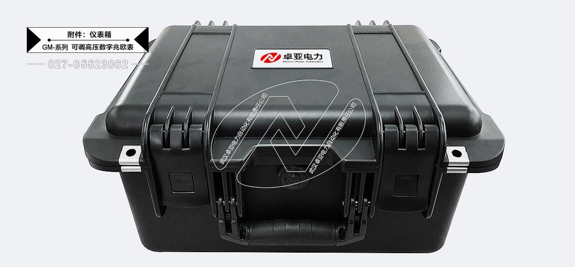 5kV可调高压数字兆欧表 - 机箱