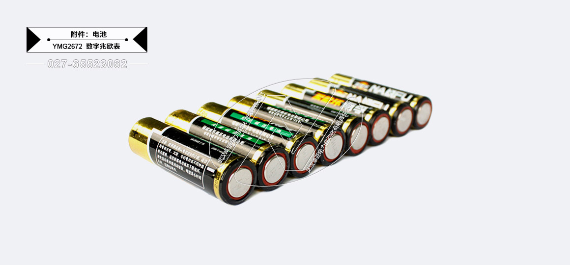 500V/1000V/2500V/5000V数字兆欧表 - 供电电池