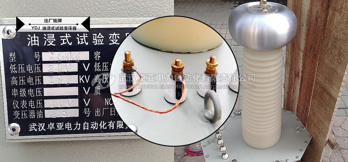 油浸式(交直流)试验变压器 - 铭牌