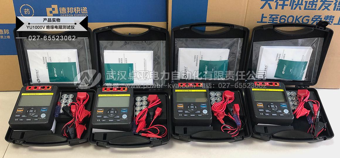 绝缘电阻测试仪(数字摇表及兆欧表)发货实拍图