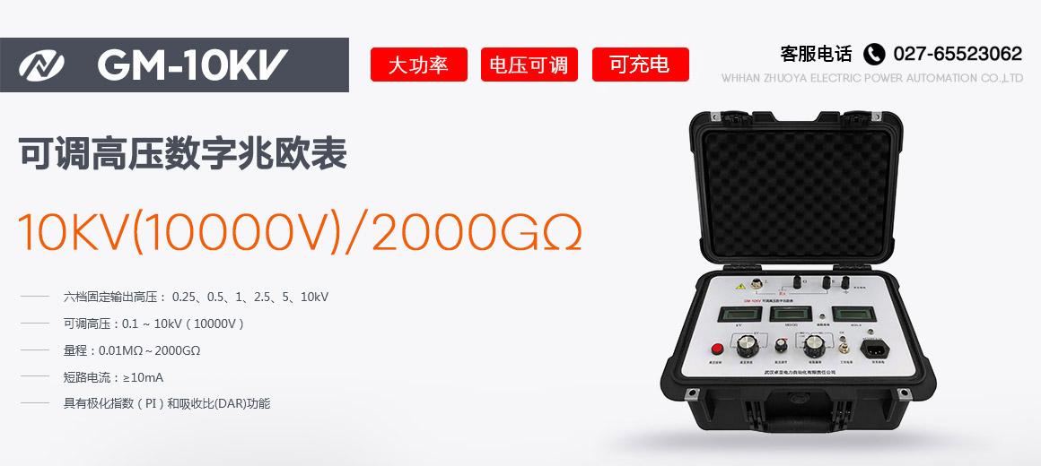 10kV可调高压数字兆欧表