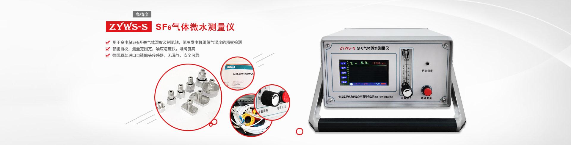 SF6气体微水测量仪